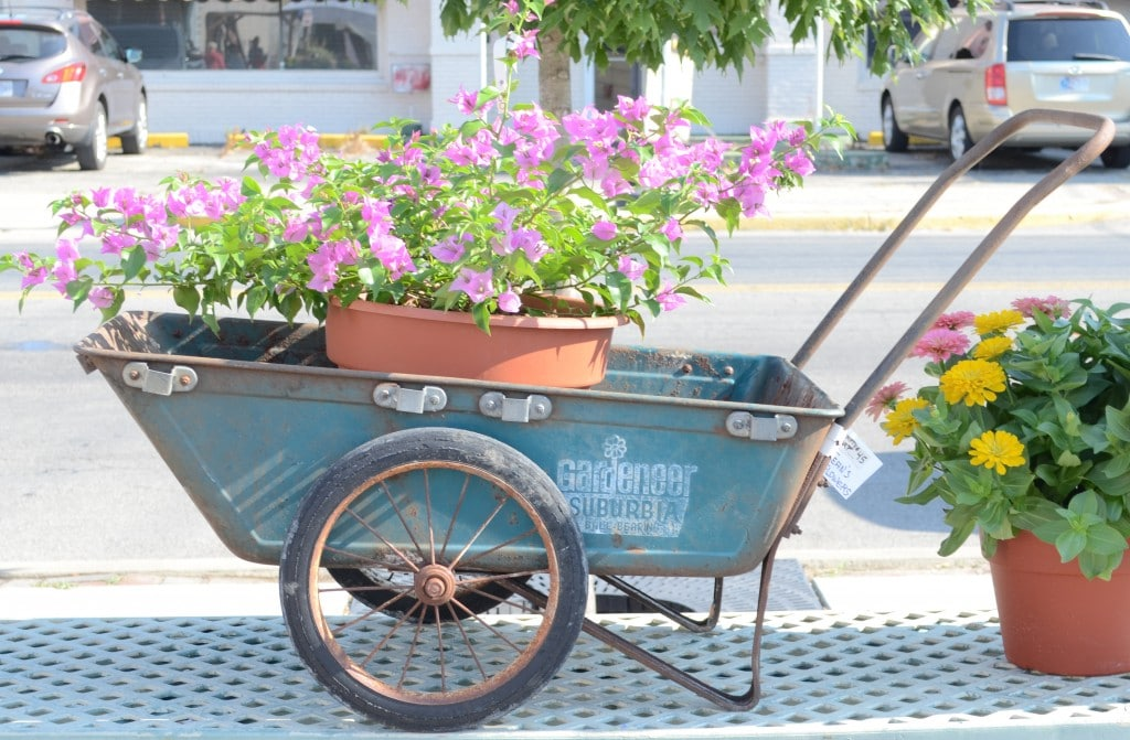 This Vintage Garden Cart Was Darling. I Still Kind Of Wish Iu0027d Brought It  Home With Me.