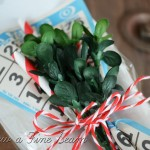 Bingo card, striped straws, and faux boxwood christmas wrap