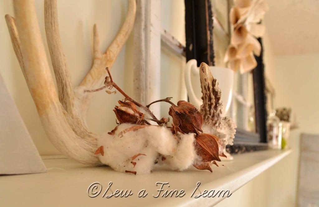 cotton 16