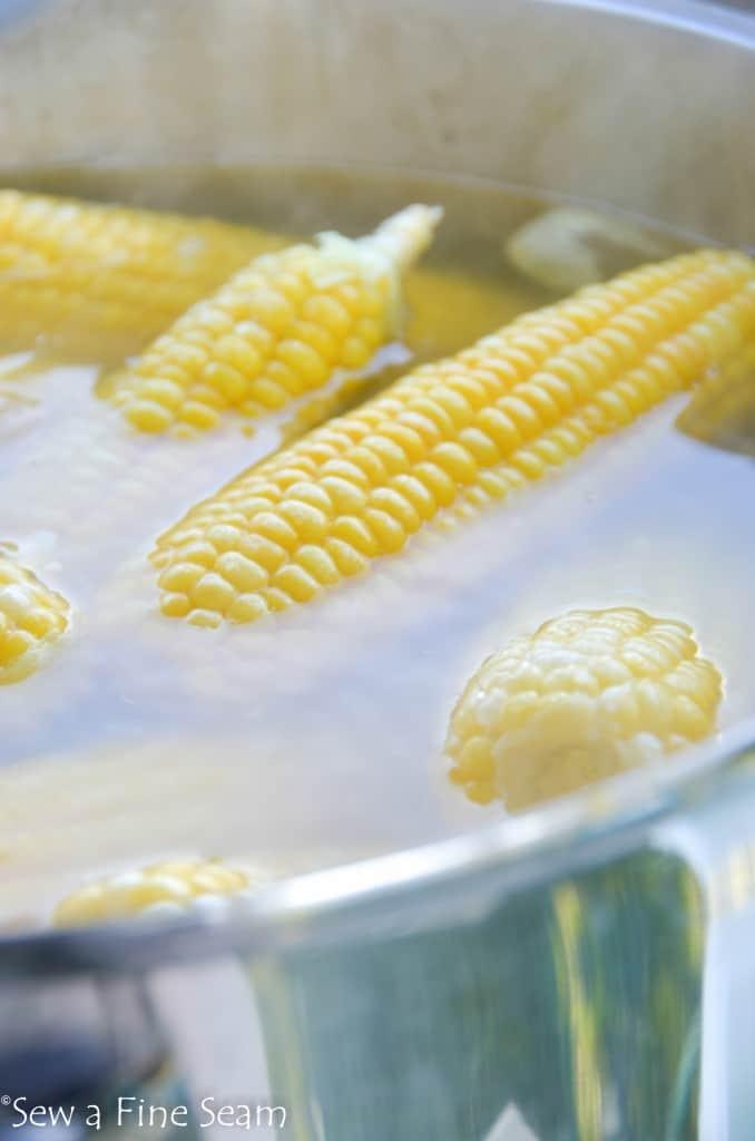 corn crop (3 of 9)
