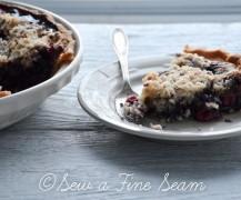 cherry-blueberry pie-15