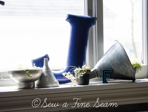 Succulents for the kitchen window sill-1