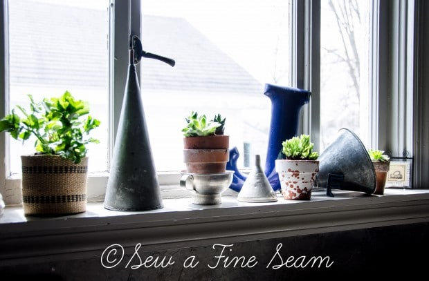 Succulents for the kitchen window sill-9