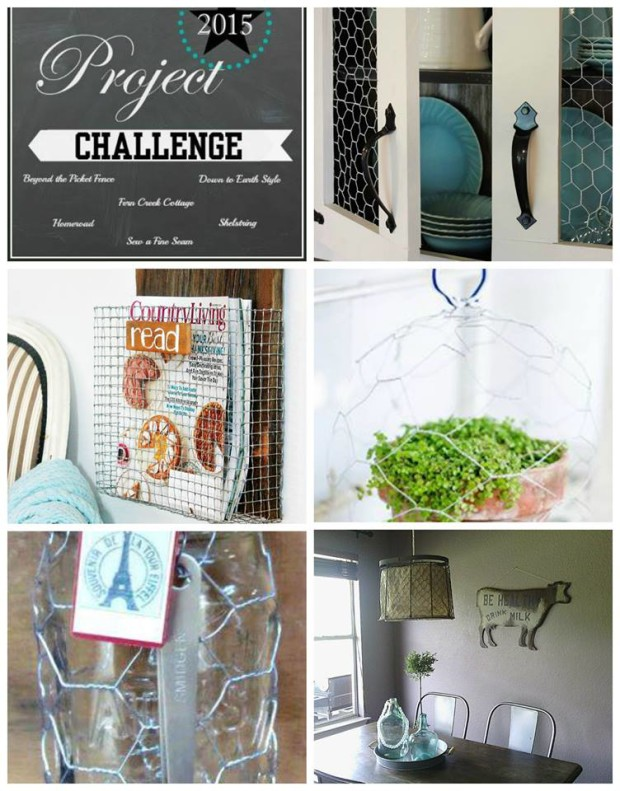 project challenge 8 chicken wire