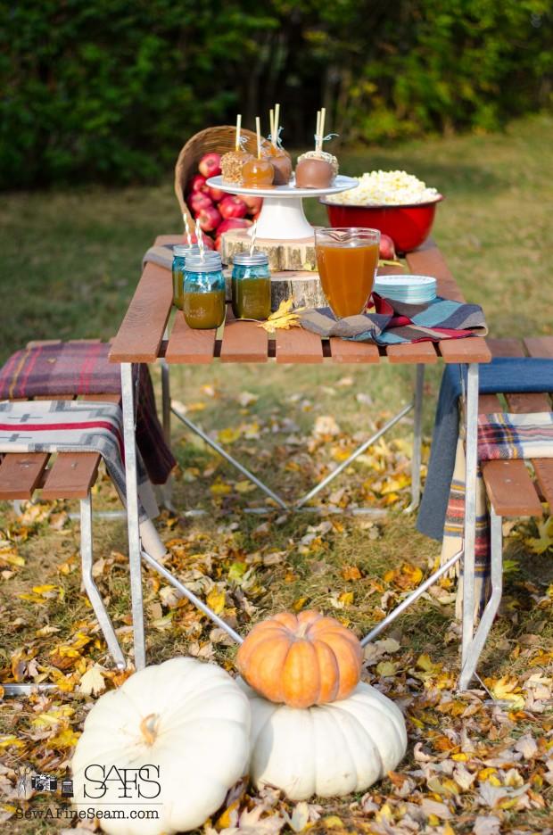 Fall picnic- plaid blankets, popcorn, apple cider, caramel apples