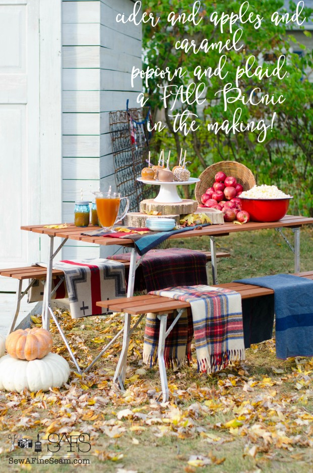 Fall Picnic - apples, cider, caramel, popcorn, plaid blankets to sit on