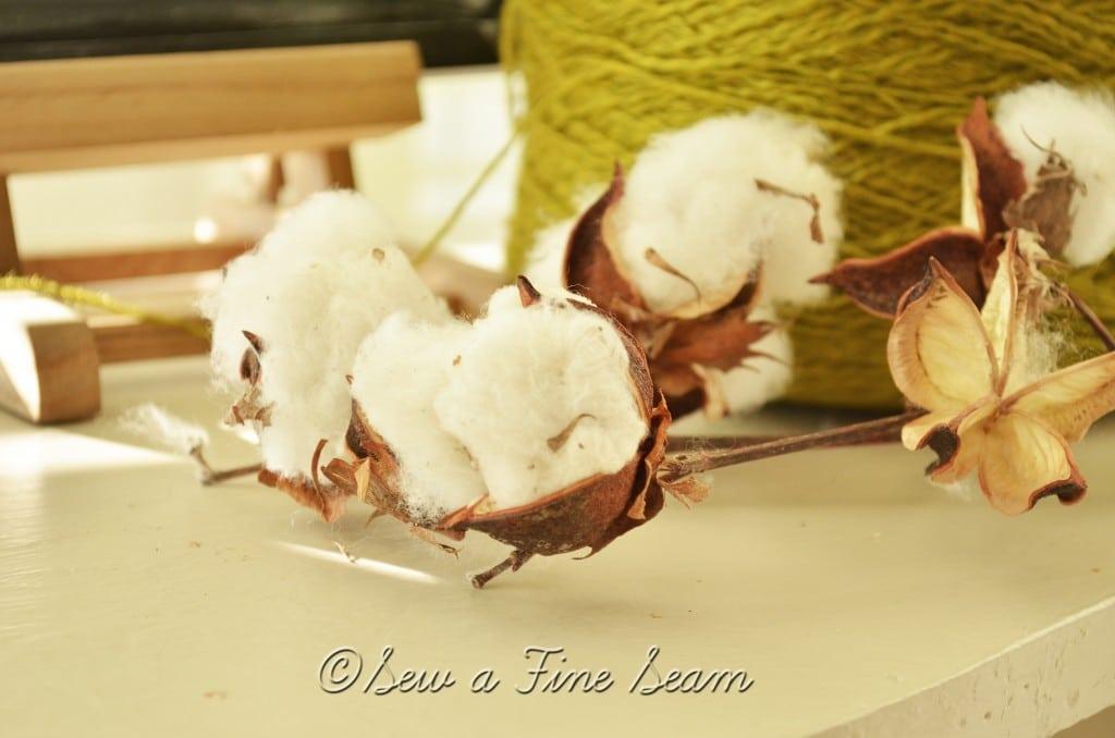 cotton 13