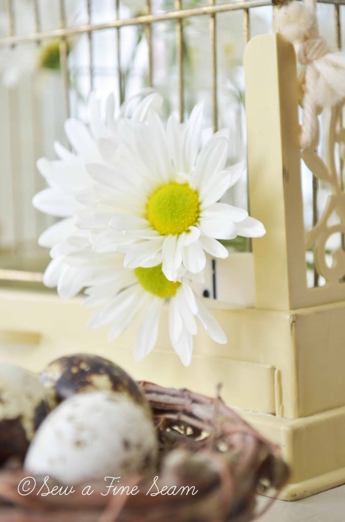 bird cage with daisys 13