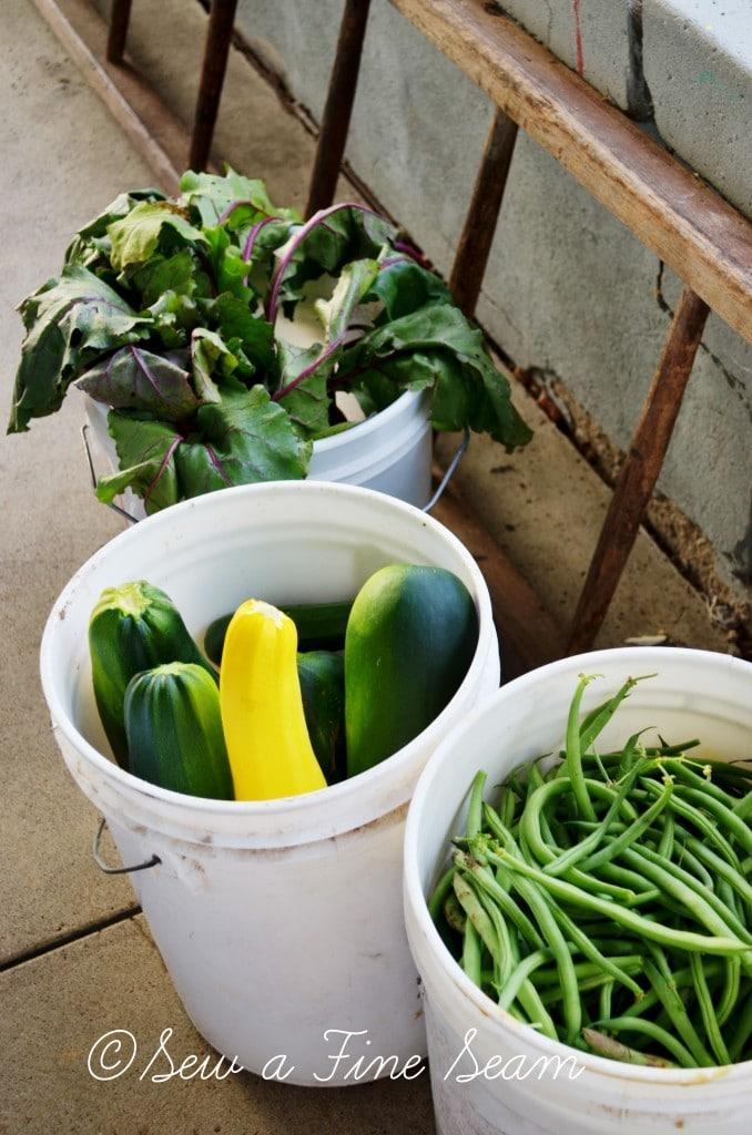 garden produce 5