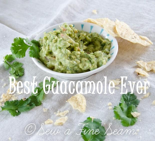 guacamole-5 copy