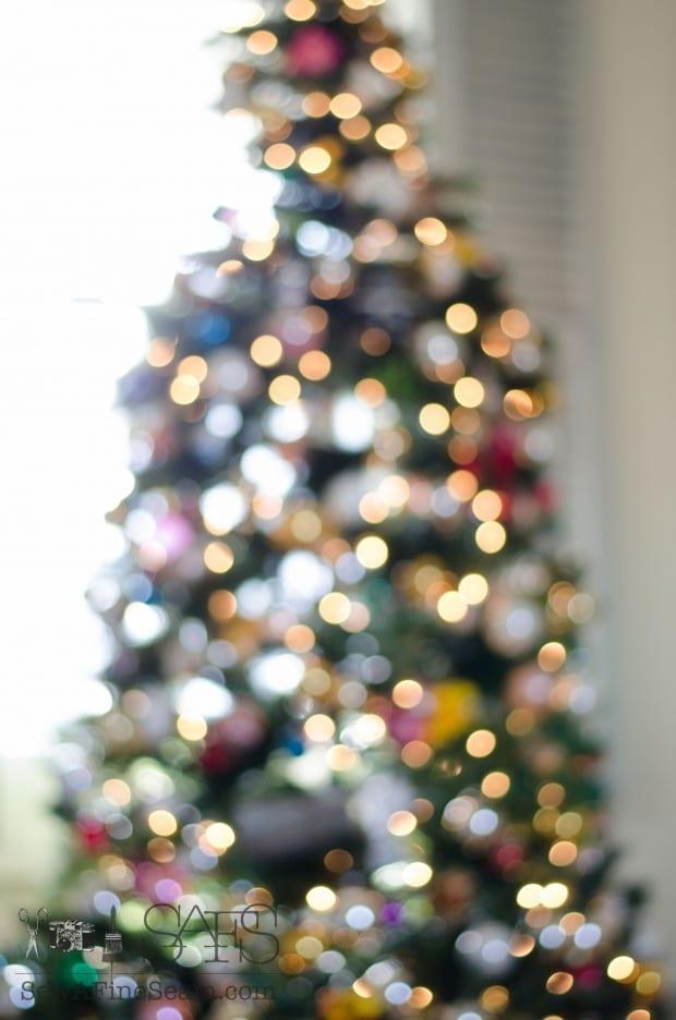 christmas tree 2014 (1 of 27)