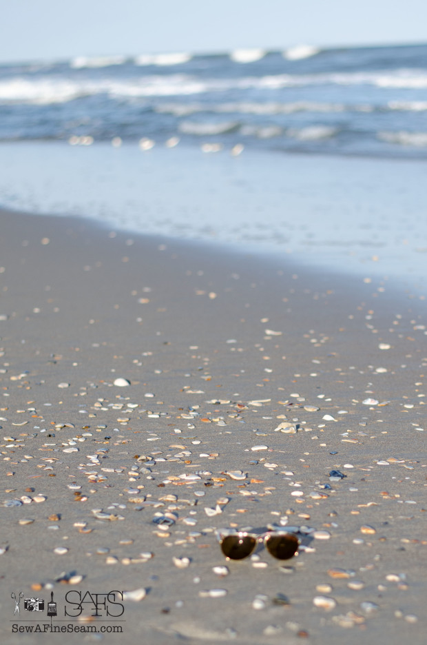 shells and rocks on the beach