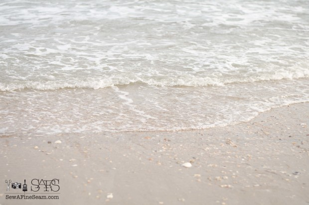 the beach 2015-6