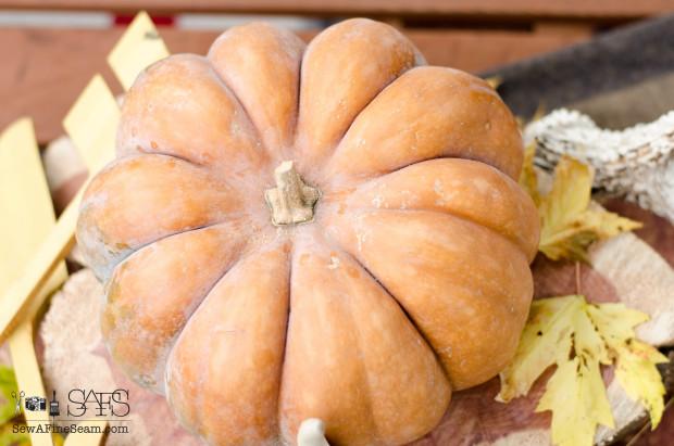 pumpkin for a simple, lovely centerpiece